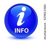 Info Glassy Blue Round Button