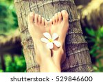 perfect clean female feet  with ... | Shutterstock . vector #529846600