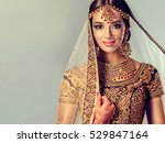 portrait of beautiful indian... | Shutterstock . vector #529847164