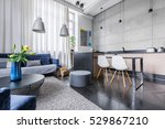 modern apartment with kitchen... | Shutterstock . vector #529867210
