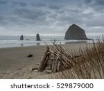 A Driftwood Fort Against The...
