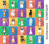 Stock vector vector set seamless background with dogs sitting and standing icon flat design 529893649