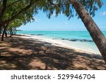 tropical white dream beach on... | Shutterstock . vector #529946704