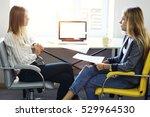 skilled recruiter making job... | Shutterstock . vector #529964530
