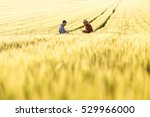 two farmers in a field... | Shutterstock . vector #529966000