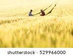 two farmers in a field... | Shutterstock . vector #529966000