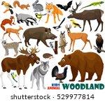 vector set of cute woodland... | Shutterstock .eps vector #529977814