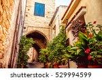 cozy narrow street in pano... | Shutterstock . vector #529994599
