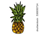 hand drawn pineapple with black ... | Shutterstock .eps vector #530050714