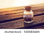 coin in piggy bank with 2017 on ... | Shutterstock . vector #530083684