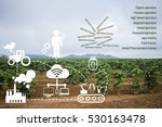 icon concept agritech system... | Shutterstock . vector #530163478