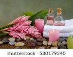 tropical spa concept | Shutterstock . vector #530179240