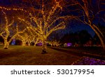 christmas wonderland in the... | Shutterstock . vector #530179954