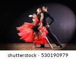 dancers in ballroom isolated on ... | Shutterstock . vector #530190979