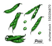 color peas in sketch style | Shutterstock .eps vector #530206870