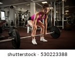 woman workout in fitness gym... | Shutterstock . vector #530223388