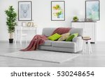 modern living room with grey... | Shutterstock . vector #530248654