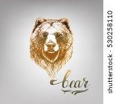 bear vector | Shutterstock .eps vector #530258110