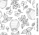 seamless doodle pattern with...   Shutterstock .eps vector #530284774