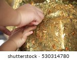Small photo of mom and child's hand affix gold Buddha to pray some thing