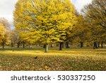 Autumn In London. As Autumn...