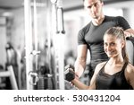 young adult woman working out... | Shutterstock . vector #530431204