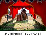 beautiful decorated empty camel ... | Shutterstock . vector #530471464