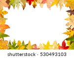 seasonal frame of autumnal... | Shutterstock . vector #530493103