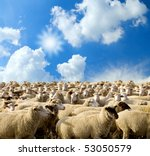 Herd Of Sheep On A Background...