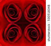 Seamless Macro Red Rose Patter...
