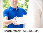 smiling delivery man in blue... | Shutterstock . vector #530533834