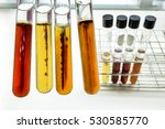 bacterial anaerobe culture in... | Shutterstock . vector #530585770
