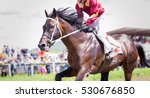 Stock photo racing horse portrait in action on competition 530676850