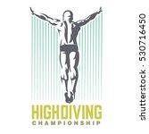 high diving. sport emblem. | Shutterstock .eps vector #530716450