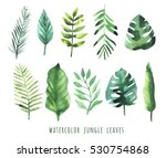 watercolor set of tropical... | Shutterstock . vector #530754868