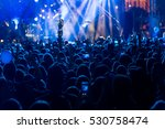 silhouettes of concert crowd in ... | Shutterstock . vector #530758474