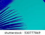 abstract caribbean palm tree... | Shutterstock . vector #530777869