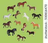 Stock vector illustration of different breeds of horses various color horses horse icon set set of horses in 530816470