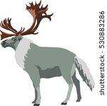 reindeer eps | Shutterstock .eps vector #530883286
