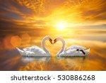 Beautiful white swan in heart...