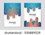 abstract vector layout... | Shutterstock .eps vector #530889529