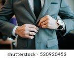 men with blazer | Shutterstock . vector #530920453