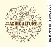 agriculture minimal thin line... | Shutterstock .eps vector #530926024