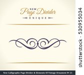 new calligraphic page divider... | Shutterstock .eps vector #530955034