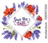 wildflower lavender flower... | Shutterstock . vector #530957203