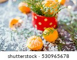 Tangerines  Twigs Of Thuja And...