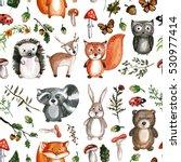 Cute Woodland Animals...