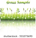 very high quality original... | Shutterstock .eps vector #531073690