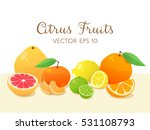 cute background with all types... | Shutterstock .eps vector #531108793