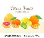 citrus fruit still life.... | Shutterstock .eps vector #531108793